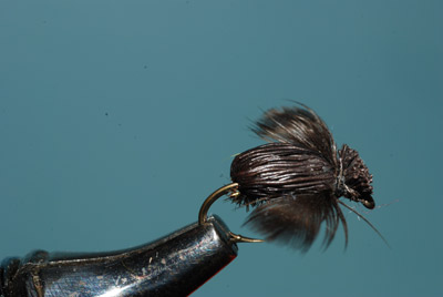 "The Murray's Housefly was the first pattern in my ""change of pace"" flies, all of which show the trout a new light pattern and a food they feed on late in the season."