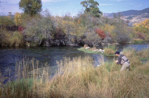 Fishing a Midge Hatch