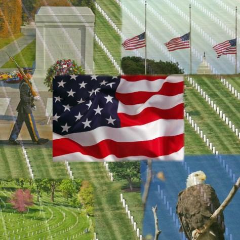 Thank you Veterans God Bless