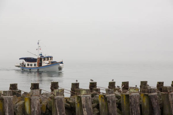 mv Archimedes meets Renegade at Point Hudson