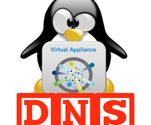 Quick to the point – Clearing DNS Cache on the VCSA