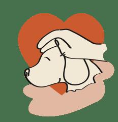 Hand streichelt Hund