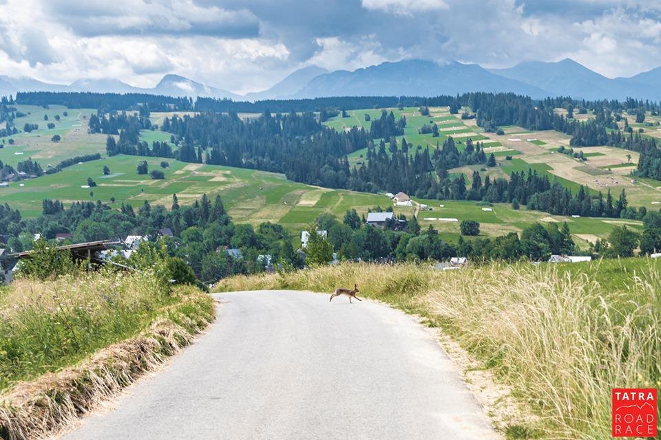 Tatra Road Race - Ostrysz jeszcze z ładną pogodą...