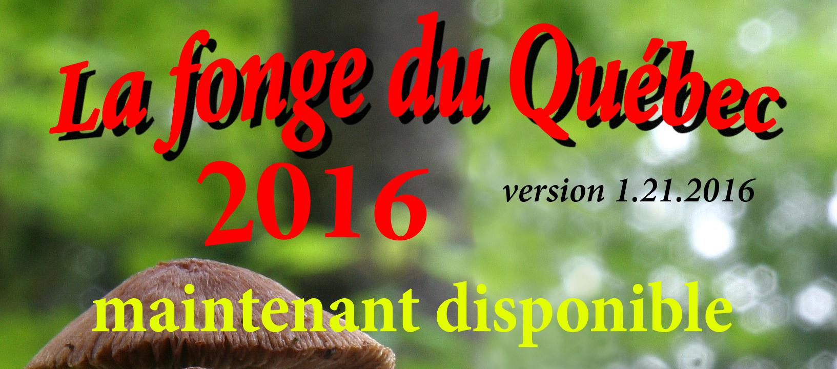 Version 2016 de «La fonge du Québec»