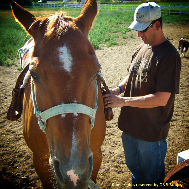 Kyle and his Horse