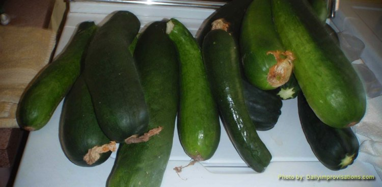 Cucumbers on a washer ready to be harvested