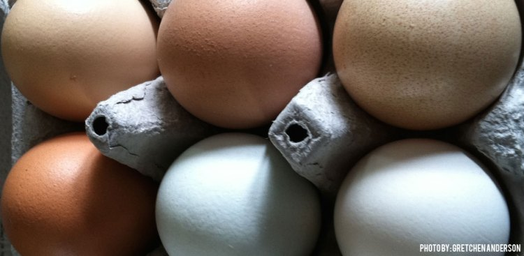 03012016_Half-a-dozen-eggs-in-a-carton