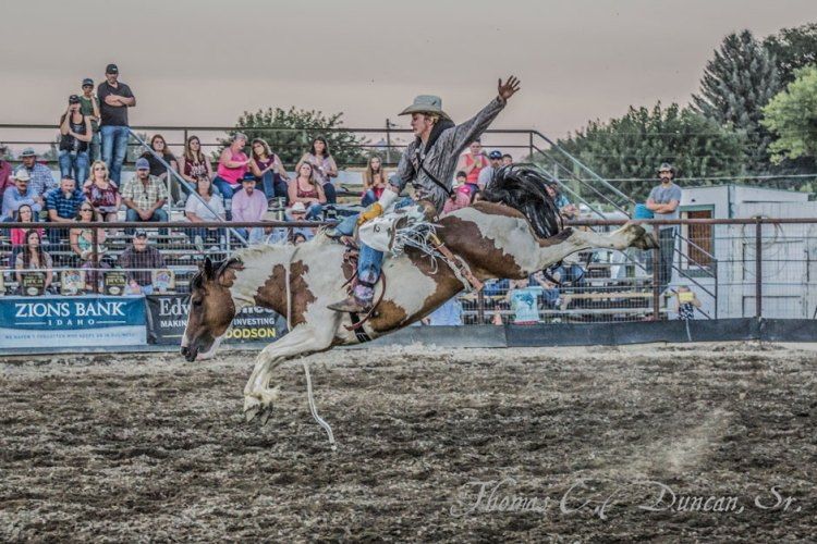 09032016_bronc-rider-at-Owyhee-County-Rodeo