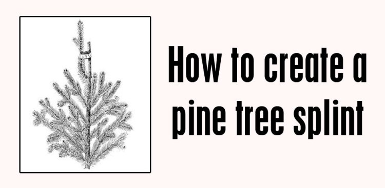 02202017_how-to-create-a-pine-tree-splint