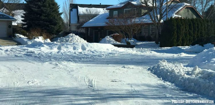 03222017_snow-mold-winter-neighborhood-picture-full-of-snow