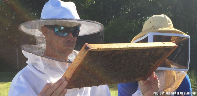 11282017_beekeeping-what-are-your-questions-2