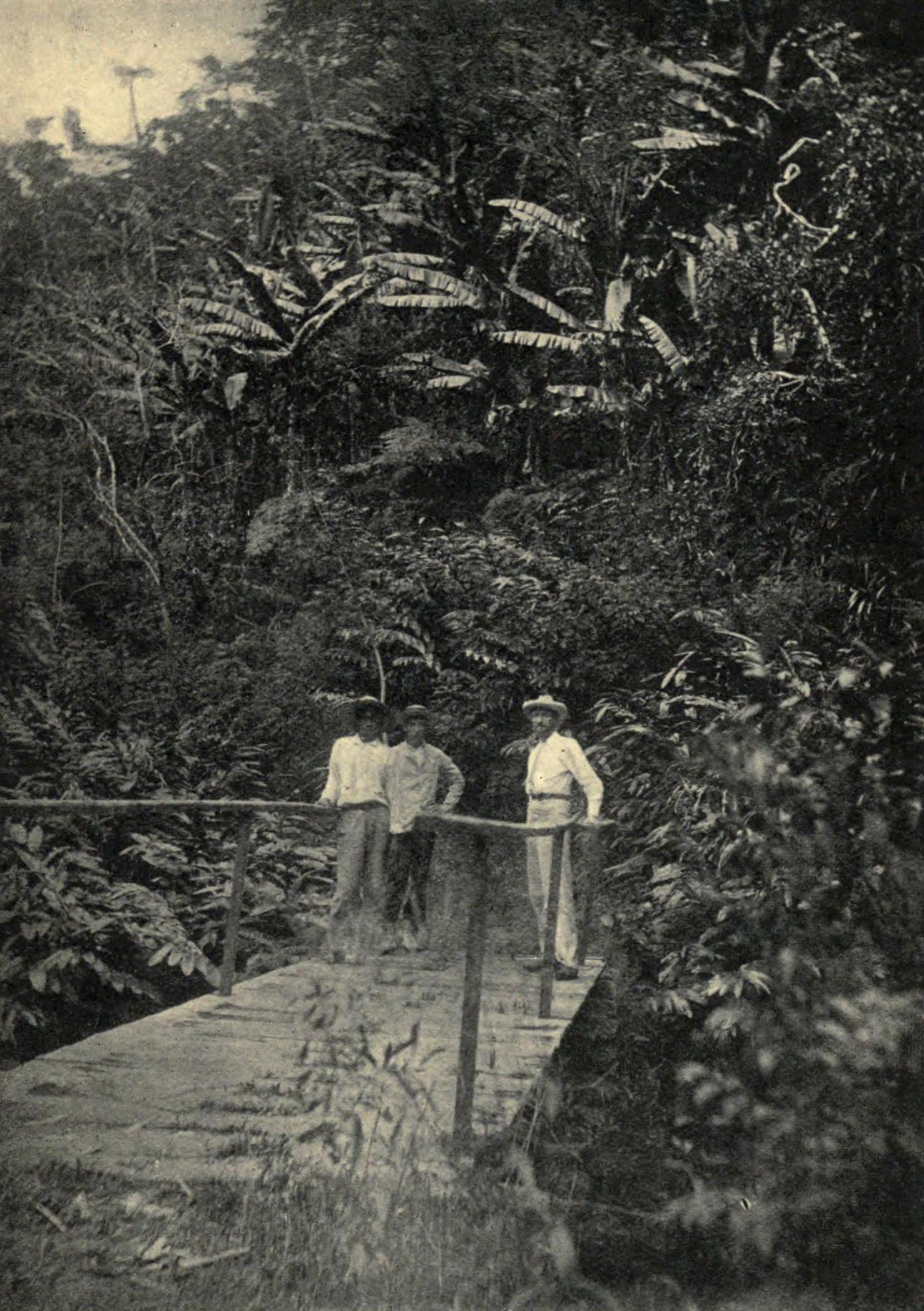 Clement Lindley Wragge on a bridge over a rivulet in Tahiti