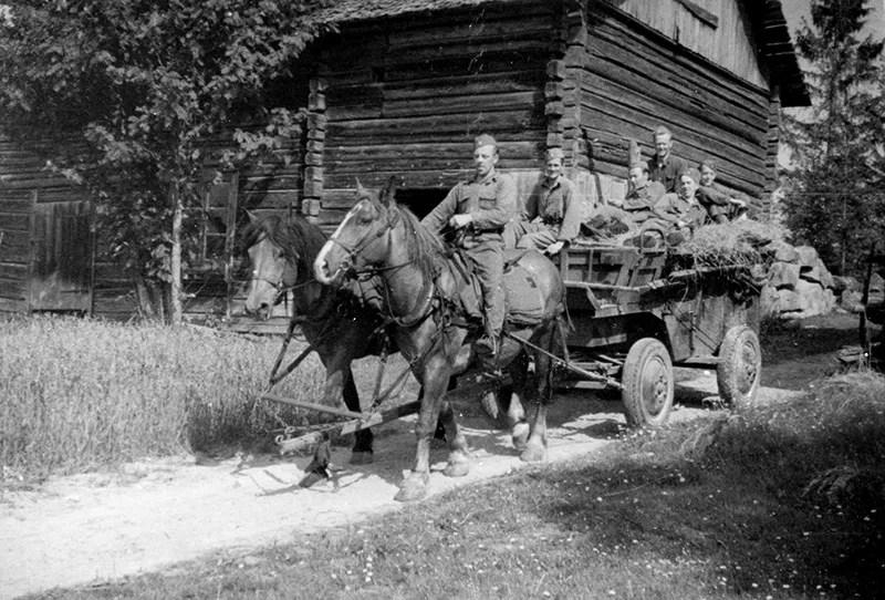 Swedish military conscription around 1918