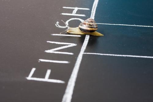 Snail crossing finish line - finish goal concept