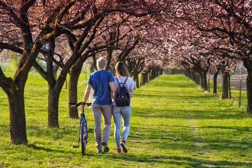 Couple walking in a park in spring