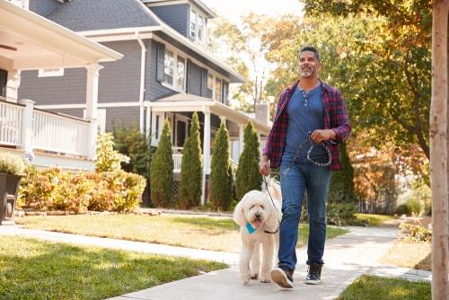 Man walking dog on a suburban street
