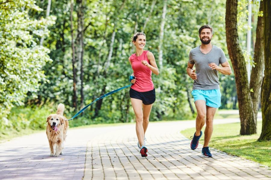 Couple jogging in park with dog
