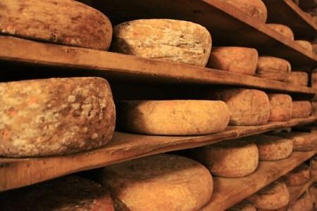 Sélectionner le fromage adapté à un plateau varié