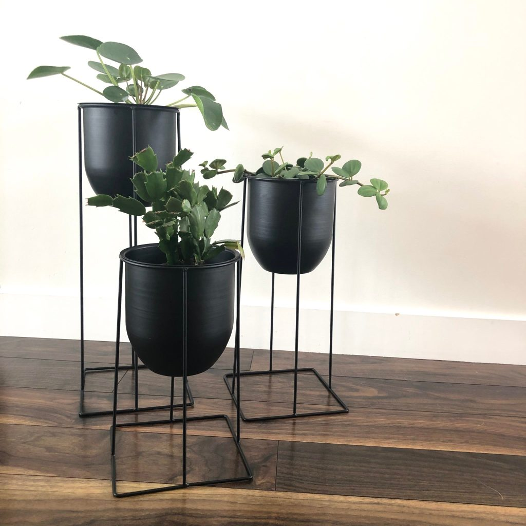 Unique Plant Stands Ideas for Your Home - My Tasteful Space on House Plant Stand Ideas  id=75881