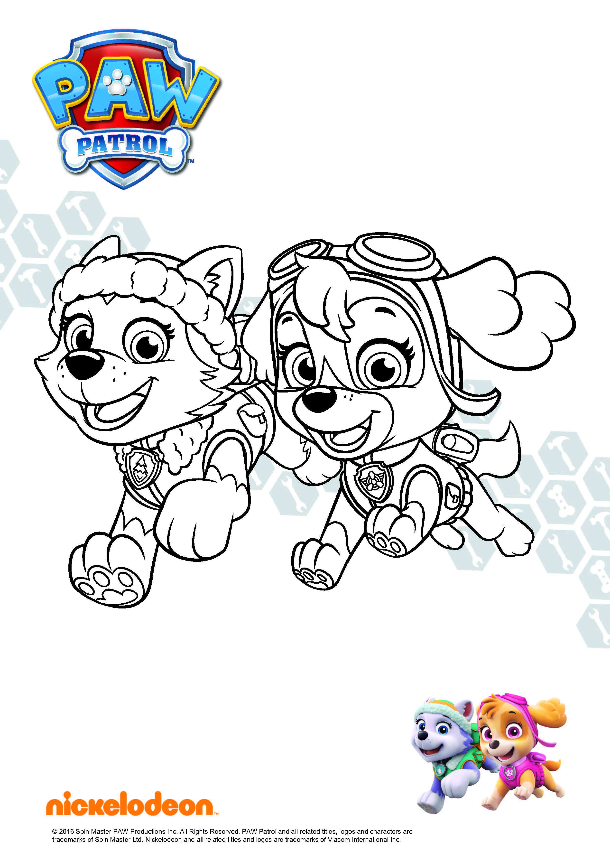 Chase From Paw Patrol Skye