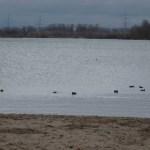 Foto: Monika Kröber - Blick auf den Silbersee