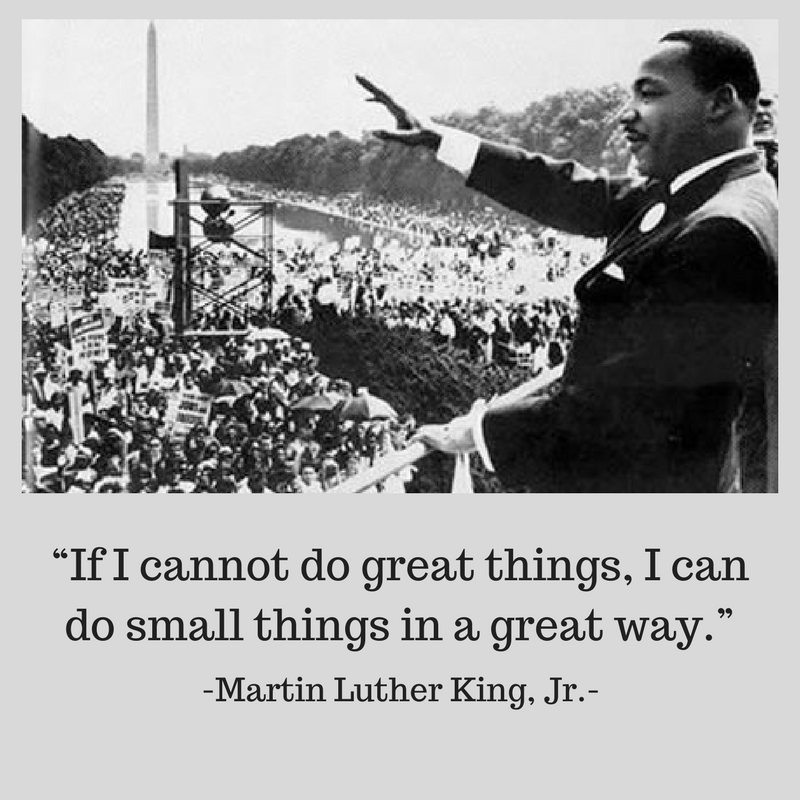 Image result for small great things mlk