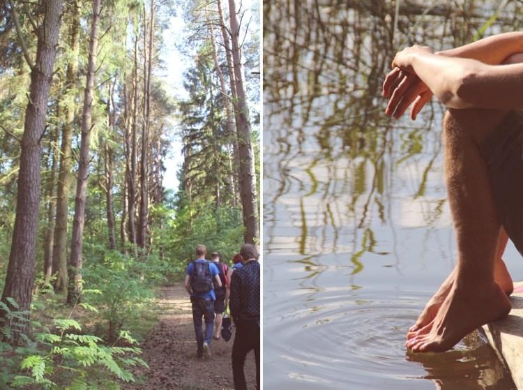 Wald & See