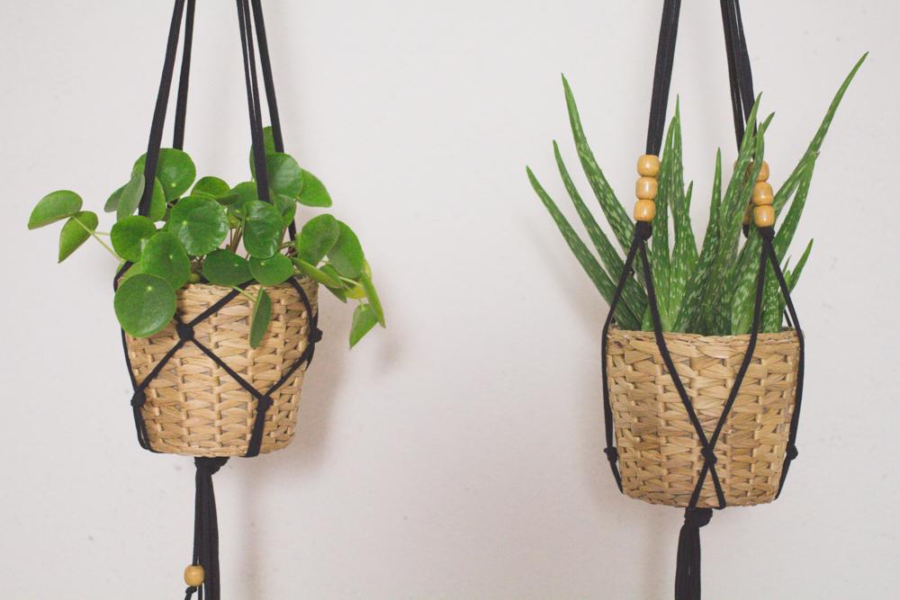 die perfekte blumenampel selber machen - hängekorb mit kokosfasern ...