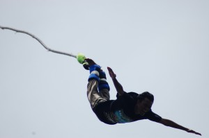 bungy-jump4