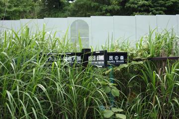 Kanazawa_cw_45