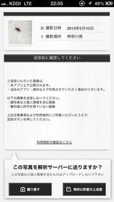 Mushihanteiki_02