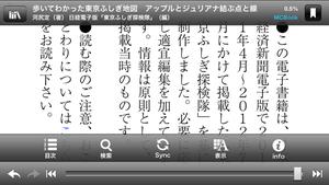 Nikkei_store_13