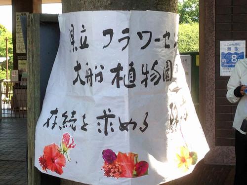Oofuna_botanical_01