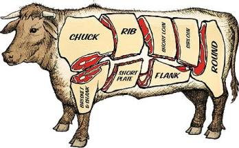 beef-cow-drawing-beef22