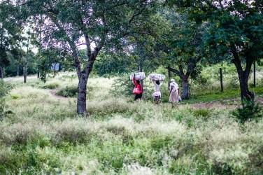 "15h06 Ngomane, Swaziland | ""Long Way Home"" | 24hourproject"