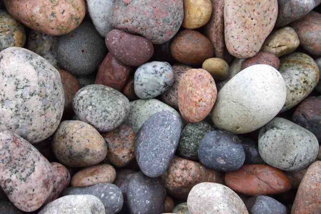 Ook stenen vormen een perfect mulchmateriaal!