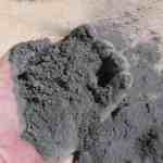 8 Belangrijke Voordelen van Steenmeel