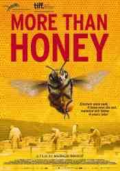 Honingbijen: 1 Film en 2 Reportages die u Zeker Moet Zien!