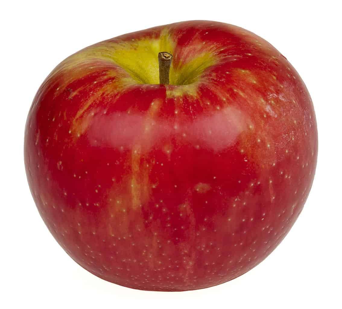 Kruidenweetjes: Appel (Malus silvestris, domestica en communis)