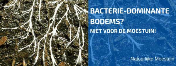 Bacterie-Dominante Bodems Zijn Niet Geschikt Voor Groenten!