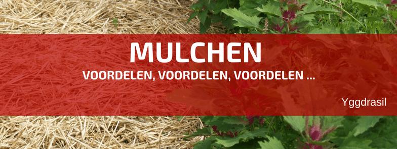 Waarom Zou Je Niet Mulchen?