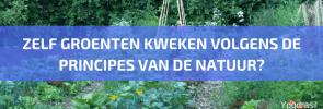 Inschrijvingen Starten voor de Online en Live Cursus 'Groenten Kweken' 2018-2019