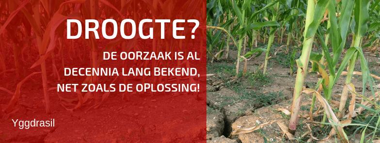De Waterkringloop: de Reden Waarom Het Al Jaren Te Droog Is!
