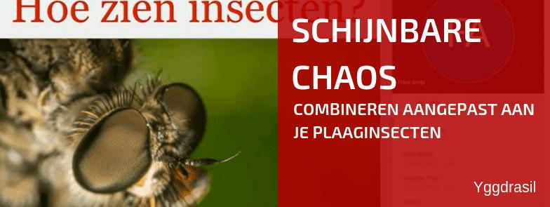 Schijnbare Chaos: Hoe slecht ziet een insect?