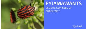 Tuinbewoners: Graag gezien of niet: Pyjamawantsen