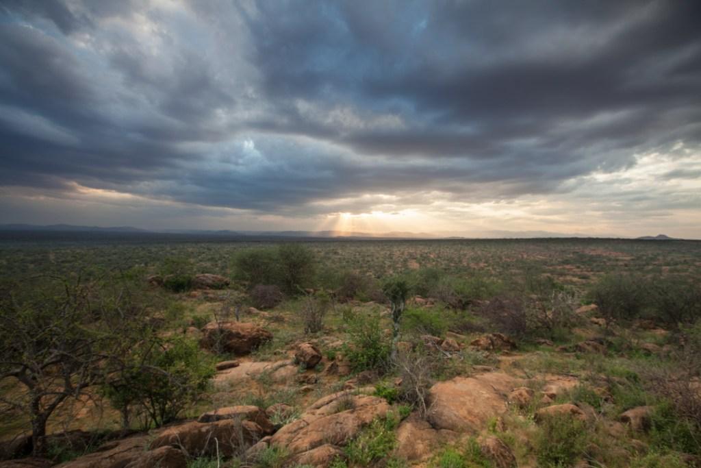 Sunset in Samburuland | Photo by Nelson Guda © 2019