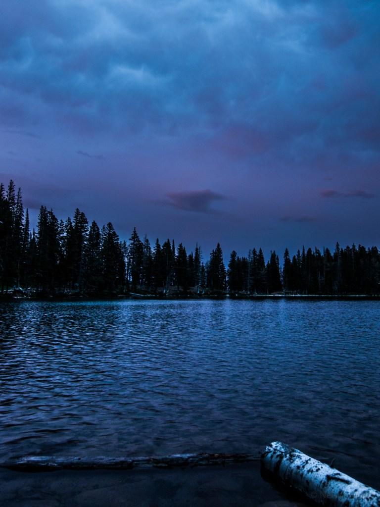 Unnamed Roadless Area, Montana | Roadless Project © Nelson Guda 2019