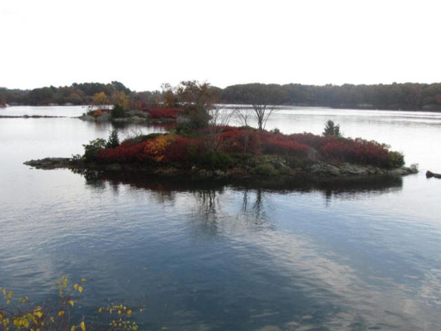 Islands in the Piscataqua River displaying fall color