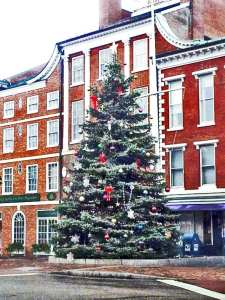 Portsmouth NH Christmas tree in Market Square downtown