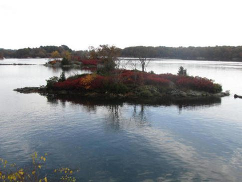 Portsmouth NH is showing it's fall colors all over